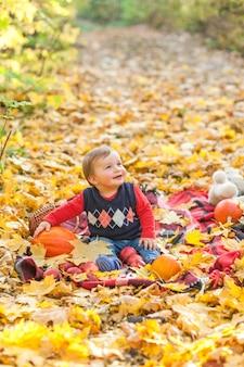 Happy little boy with pumpkin looking away