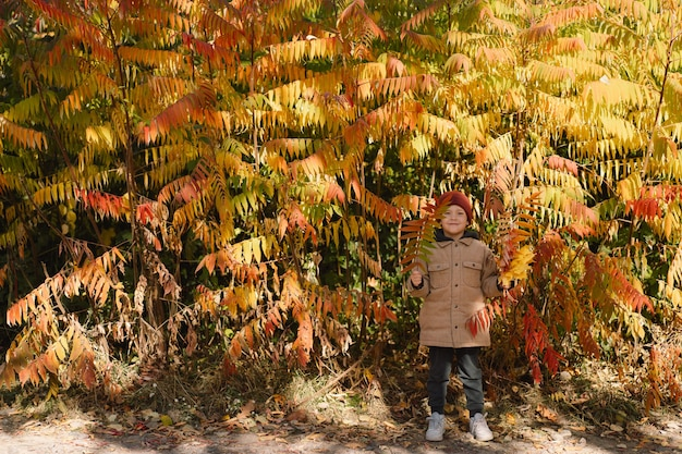 幸せな小さな子供男の子が笑って、秋の日に遊んでいる子供は葉で遊ぶ