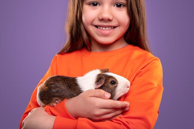 Happy little girl in casual orange sweatshirt hugging cute guinea pig while standing against purple background