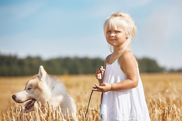 Счастливая маленькая девочка с собакой хаски играет в пшеничном поле на закате