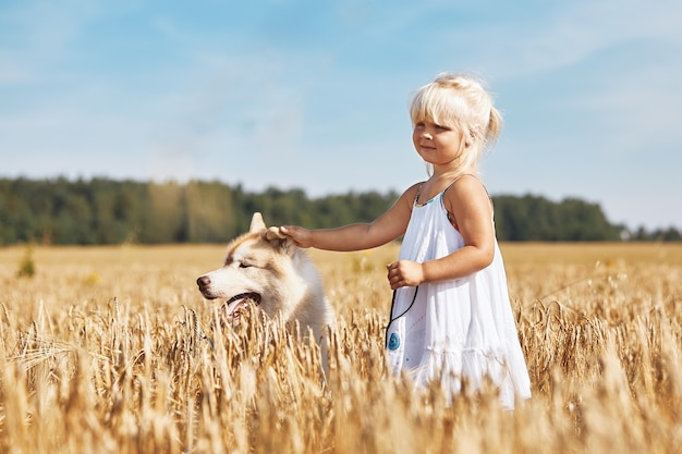 Happy little girl with a dog husky playing in the wheat field on sunset.