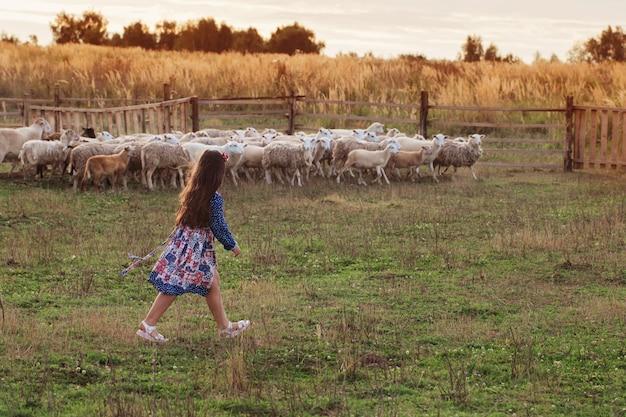 Счастливая маленькая девочка с овцами на ферме