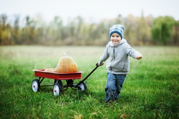 Happy little toddler boy on pumpkin patch on cold autumn day, with a lot of pumpkins for halloween or thanksgiving