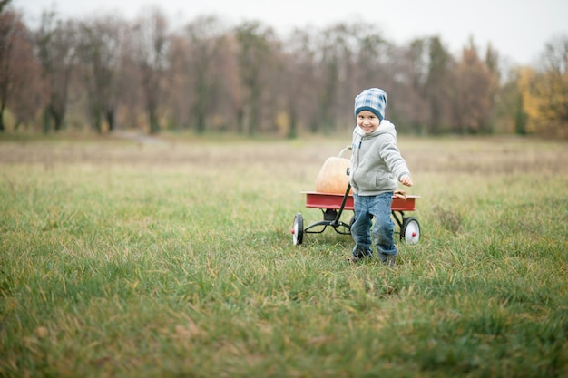 Happy little toddler boy on pumpkin patch on cold autumn day
