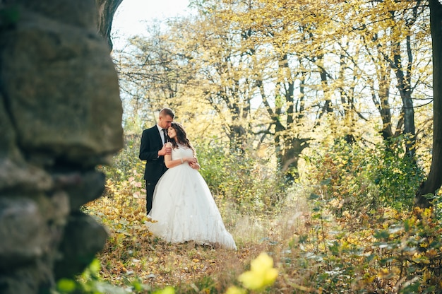 Happy and in love bride and groom walk in autumn park on their wedding day