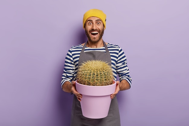 Happy male botanist suprised cactus grew so quickly, holds purple pot with prickly houseplant