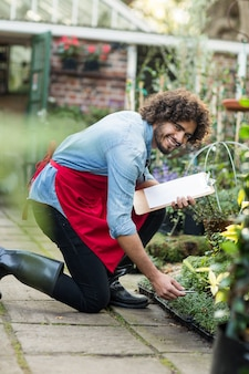 Счастливый мужской садовник работает за пределами теплицы