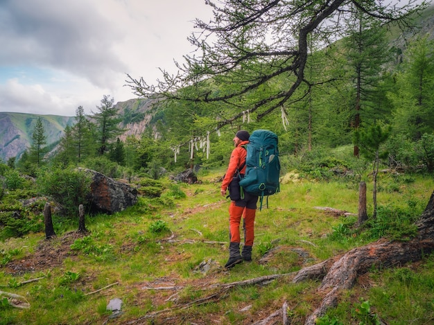 Happy male tourist with a large backpack in a green mountain forest passes by a large tree with symbolic ribbons.