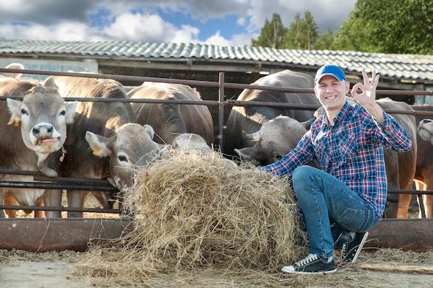 Счастливый человек на коровьей ферме показывает рукой хорошо знаком