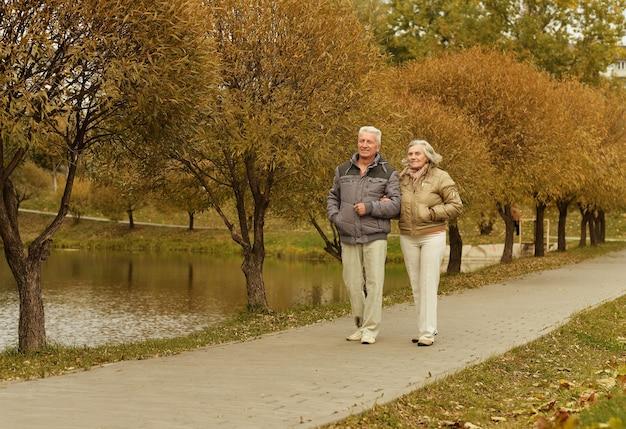 가 공원에서 산책 하는 행복 한 성숙한 커플