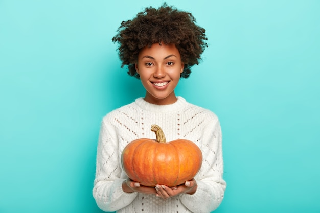 Happy model with afro hair, holds big ripe orange pumpkin, knows good recipe for preparing tasty organic meal, wears white sweater