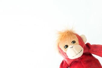 Happy monkey on white background.
