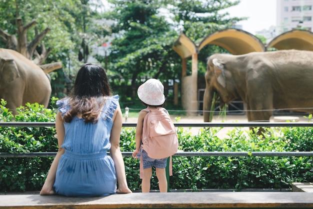 幸せな母と娘が動物園で象を見て餌をやる。