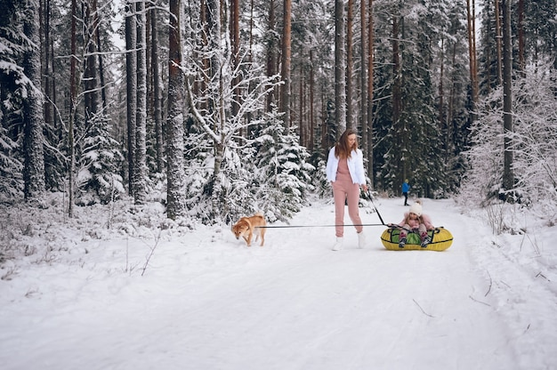 Happy mother and little cute girl in pink warm outwear walking having fun rides inflatable snow tube with red shiba inu dog in snowy white cold winter forest outdoors