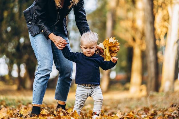 公園で楽しんでいる彼女の小さな赤ちゃんの息子と一緒に幸せな母