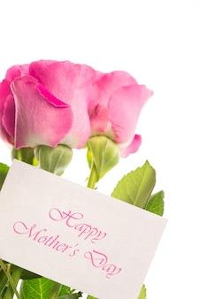 핑크 장미와 함께 해피 어머니의 날 카드