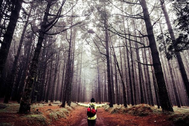자연과 아름다운 높은 나무 숲 나무를 즐기는 행복한 사람들 모험 트레킹 하이킹 개념