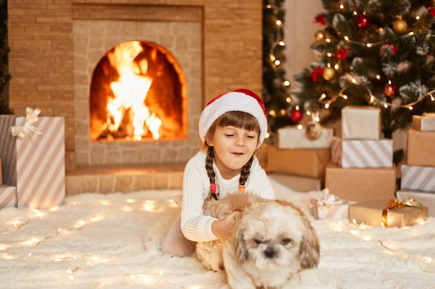 Happy satisfied female child wearing white sweater and santa claus hat, playing with pekingese dog, sitting on floor near christmas tree, present boxes and fireplace.