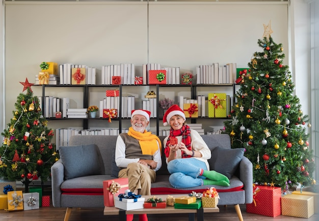 Happy senior caucasian couple wearing santa hat sitting together on sofa couch holding christmas gift at home with decorated christmas tree in cozy living room. woman satisfied with present.