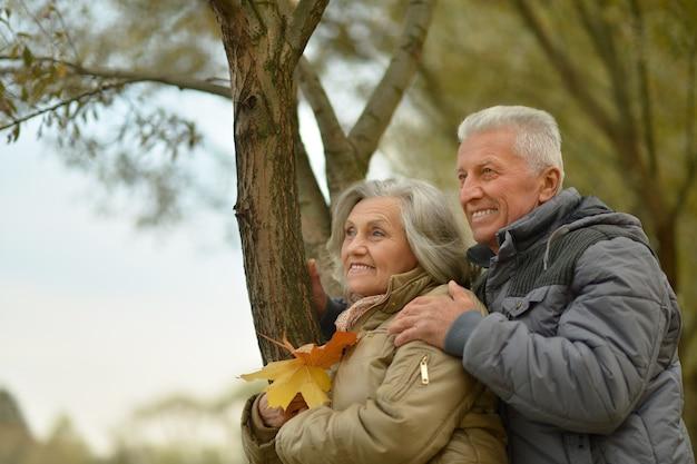 秋の公園で水の近くの幸せな年配のカップル