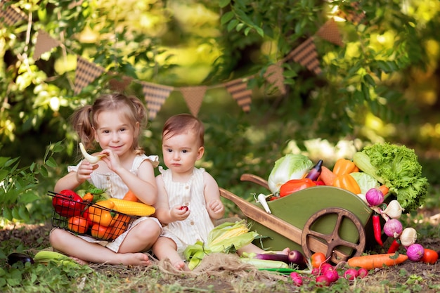 Happy sisters, girls prepare a vegetable salad on the nature. little gardeners pick vegetables