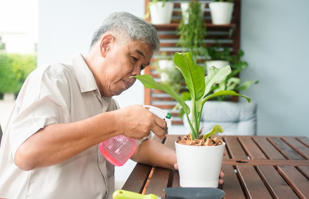 A happy and smiling asian old elderly man is planting for a hobby after retirement in a home. concept of a happy lifestyle and good health for seniors.