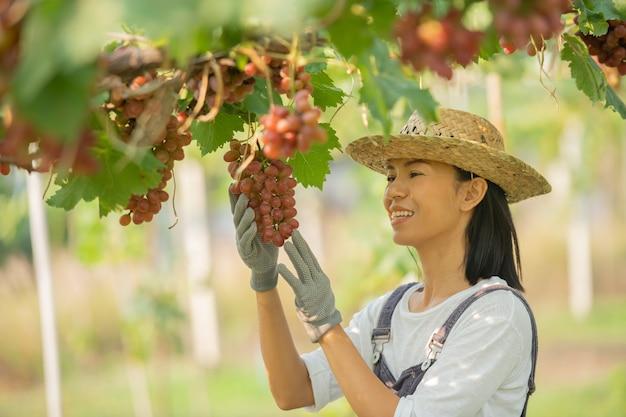 바지와 농장 드레스 밀짚 모자를 쓰고 행복 웃는 쾌활한 포도원 여성