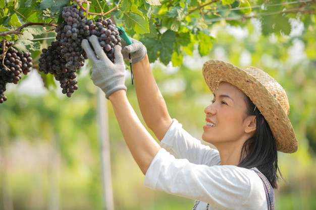 Happy smiling cheerful vineyard female wearing overalls and a farm dress straw hat