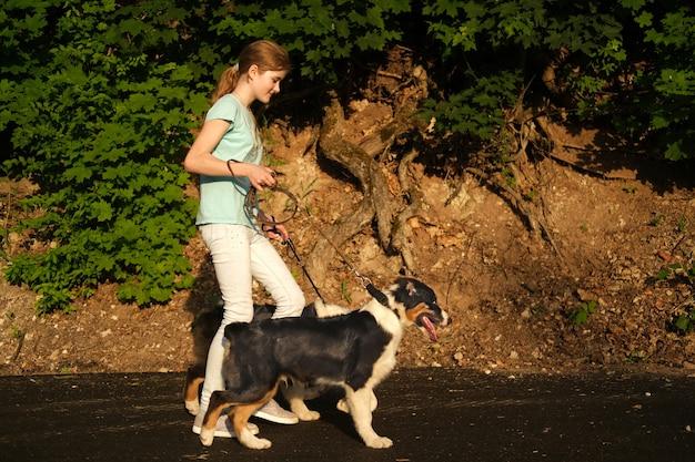 Счастливая девочка-подросток прогулки двух австралийских овчарок трех цветов щенка в летнем парке. неполная занятость. концепция ухода за домашними животными. любовь и дружба между человеком и животным.