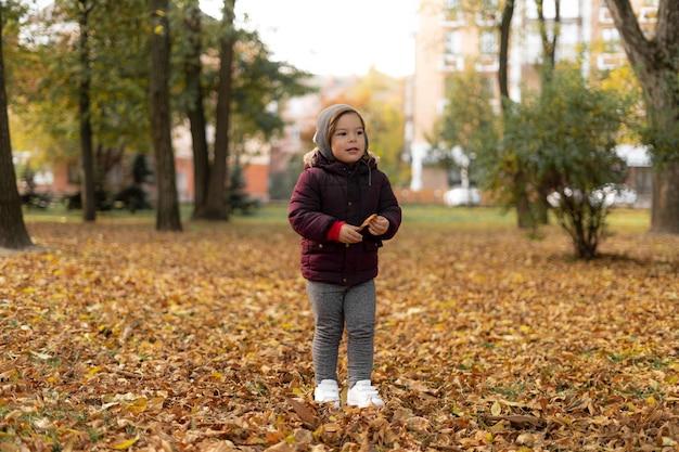 행복 한 유아 아이 화창한가 날에 노란 잎으로 재생합니다.