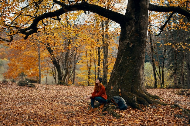 Happy traveler in park near big tree landscape nature yellow leaves model emotions