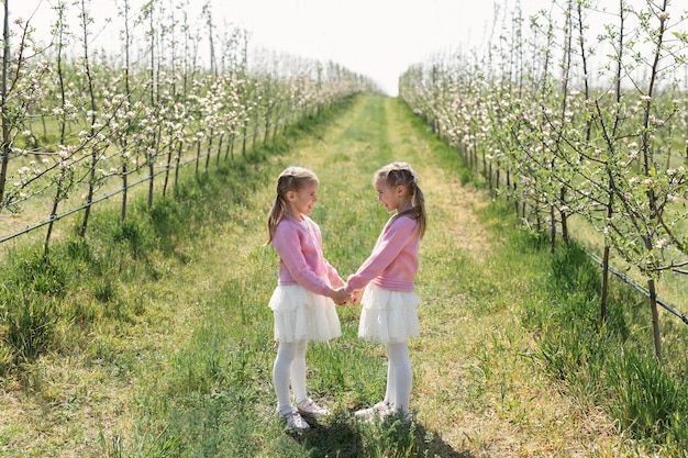 Happy twin sisters look at each other and hold hands against the background of a green blooming apple orchard.