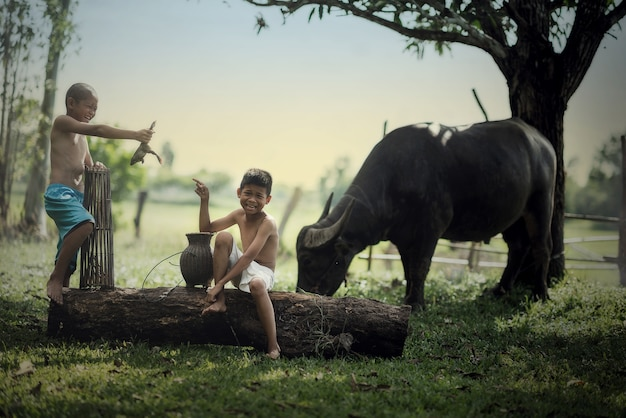 Happy two boy with holging frog at the countryside and buffalo