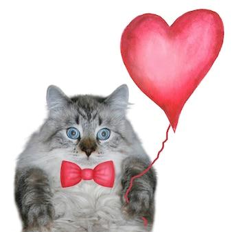 幸せなバレンタインデーの背景赤い蝶ネクタイと赤い風船と面白い猫
