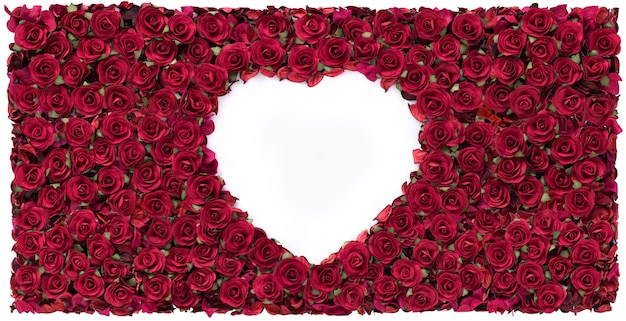 Happy valentines day white heart shape in red rose beautiful background.