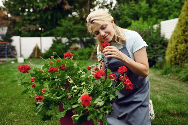 Happy woman in apron smelling flowers in the garden. female gardener takes care of plants outdoor, gardening hobby, florist lifestyle and leisure