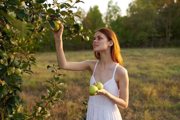 白いドレスを着た幸せな女性は、牧草地の木からリンゴを選びます。
