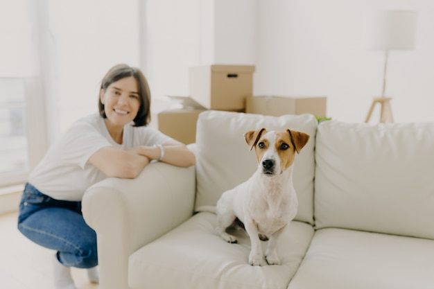 Happy woman plays with favourite pet, poses near sofa in new apartment, celebrate moving day