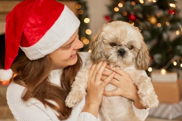 屋内でポーズをとるクリスマスの装飾の犬と幸せな女性、白いジャンパーと赤いサンタクロースの帽子をかぶった女性、笑顔で子犬を見て、休日を祝うペキニーズの女性。