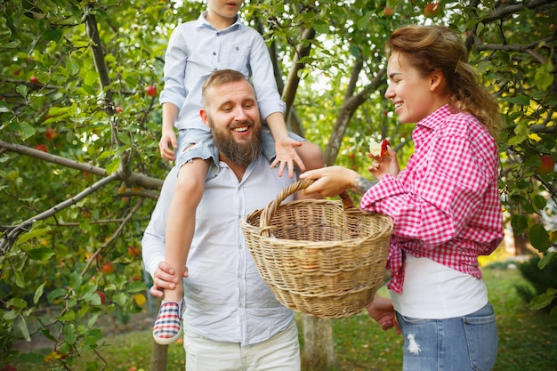 屋外の庭でベリーを摘んでいる間、幸せな若い家族。愛、家族、ライフスタイル、収穫、秋のコンセプト。陽気で健康的で素敵です。