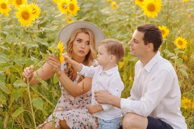 Счастливая молодая семья, мать отца и сына, улыбаются, держатся и обнимаются в поле подсолнечника