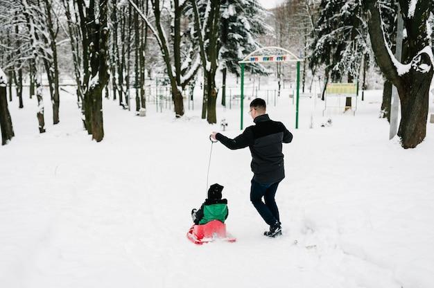 幸せな若い父と子供の男の子、そりの息子は、ウィンターパークで歩いて遊んでいます。屋外で雪の中で走って落ちる肖像画の幸せな家族。閉じる。