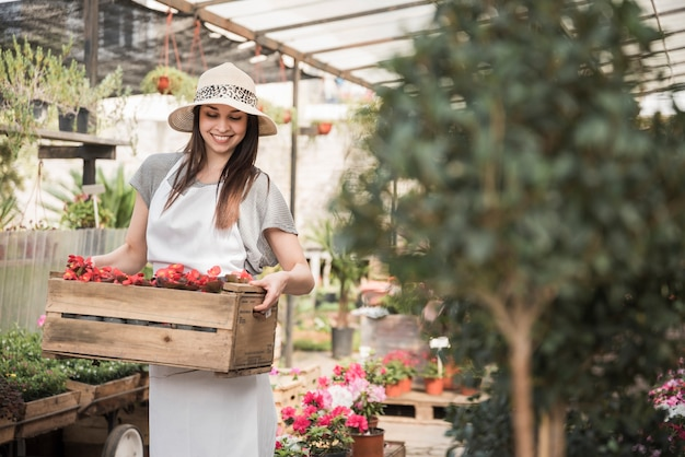 Happy young female gardener with crate of begonia flowers standing in greenhouse