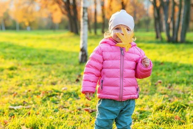 자연의 아름다운 가을 공원에서 웃고 있는 행복한 어린 소녀가 야외에서 산책합니다. 가을에 떨어지는 노란 단풍잎을 가지고 노는 어린 아이는 주황색 노란색 배경을 가지고 있습니다. 안녕하세요 가을 컨셉입니다.