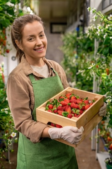 Happy young gloved female worker of vertical farm holding wooden box with heap of ripe strawberries while standing between shelves