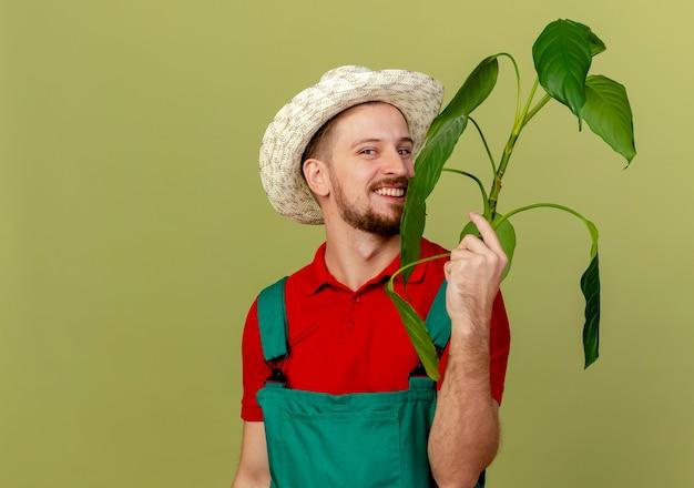 コピースペースとオリーブグリーンの壁に分離された制服と帽子保持植物の幸せな若いハンサムなスラブ庭師
