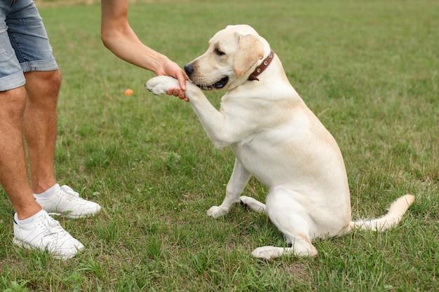 犬の足を保持している幸せな若い男