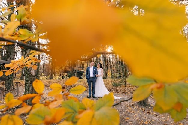 黄金色の秋の秋の公園で幸せな若い夫婦