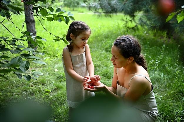 日没の暑い夏の日に庭で桜の収穫の間にリネンのドレスを着た幸せな若いママと娘。一緒に時間を楽しんでいます。幸せな家族。ポジティブな人間の感情。