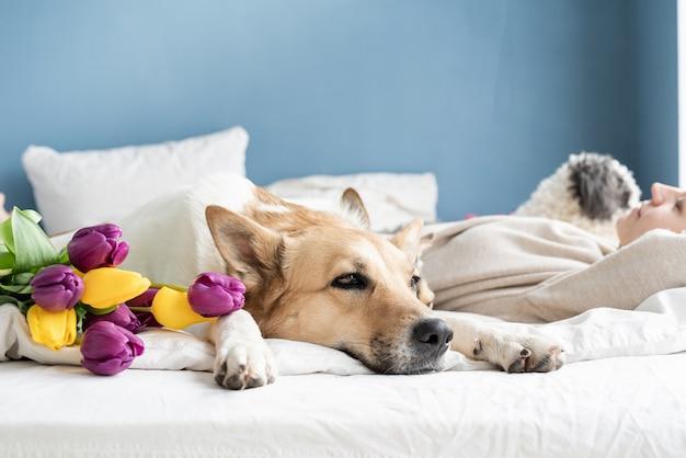 그녀의 강아지와 함께 침대에 누워 행복 한 젊은 여자, 파란색 벽 배경